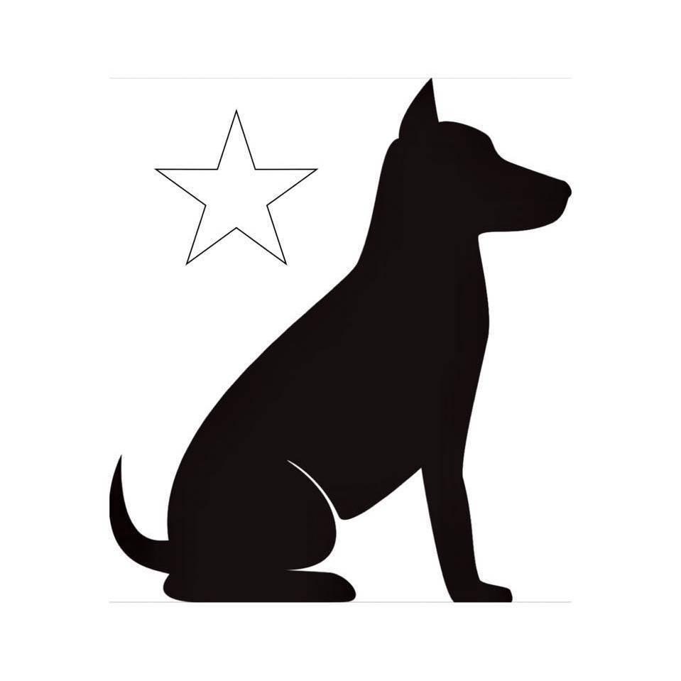 SouthLoop DogStarz
