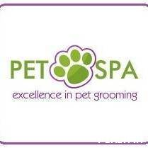 Westchester's Best Pet Spa for Dog Grooming